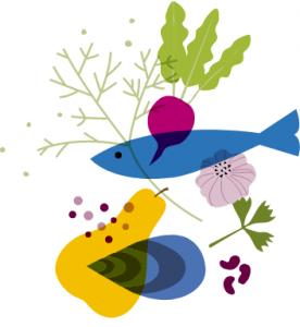 Illustration des produits locaux pour la plateforme solidaire qui relie producteurs et consommateurs en Bretagne www.produitslocaux.bzh